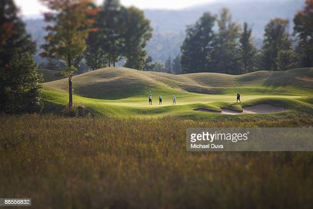golfers golfing on a golf course - golfer stock pictures, royalty-free photos & images