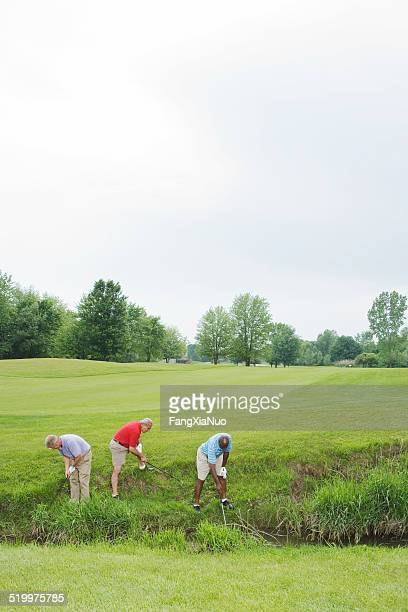 Golfers searching for lost balls in bushes