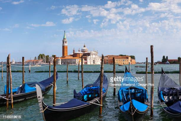 gondolas in venice, moored opposite san giorgio maggiore - terence waeland stock pictures, royalty-free photos & images