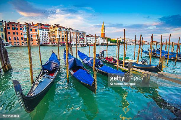 Gondolas moored in Grand Canal. Venice, Veneto, Italy