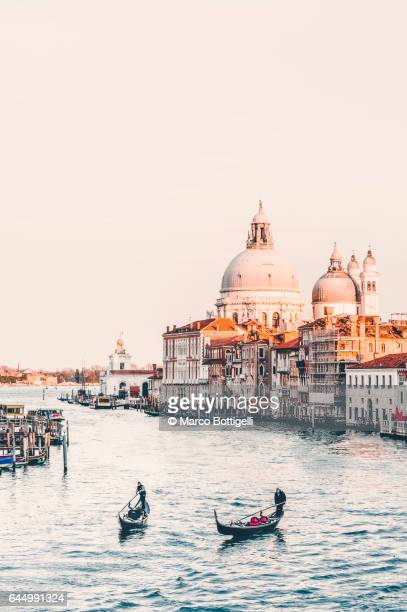 gondolas on the grand canal. venice, italy. - punta della dogana stock photos and pictures