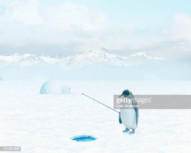 gone fishing - igloo stock pictures, royalty-free photos & images