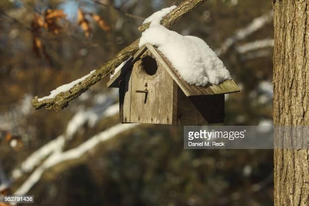 gone for the winter - vogelhäuschen stock-fotos und bilder