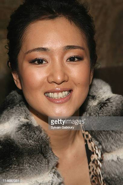 Gong Li during MetroGoldwynMayer Pictures' and The Weinstein Company's Premiere After Party for 'Hannibal Rising' at Providence at 311 West 57th...