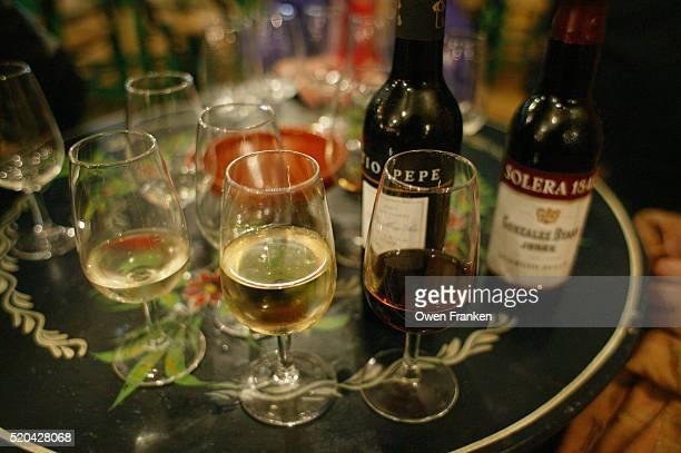 Gonzalez Byass Wines