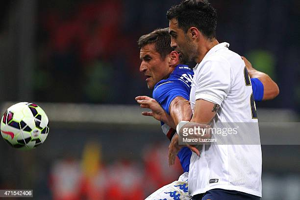 Gonzalo Ruben Bergessio of UC Sampdoria competes for the ball with Davide Brivio of Hellas Verona FC during the Serie A match between UC Sampdoria...