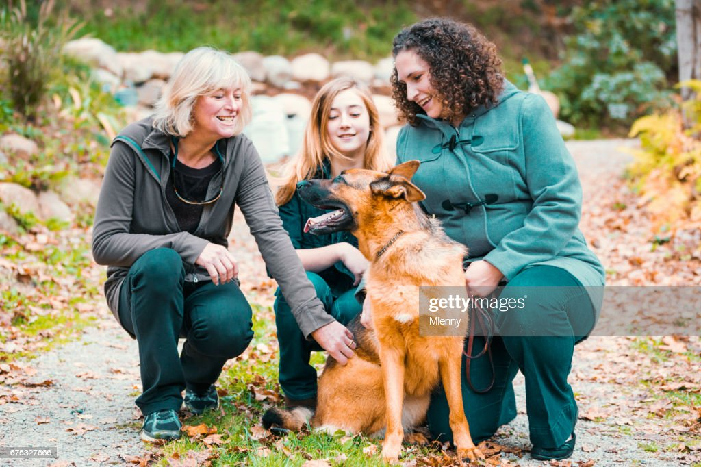 Golden retriever and woman fucking
