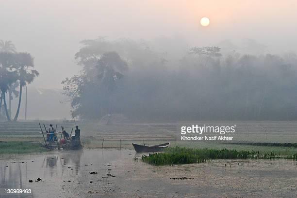 good morning bangladesh - winter bangladesh stock photos and pictures