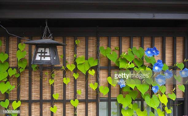 good morning - takayama city stock pictures, royalty-free photos & images