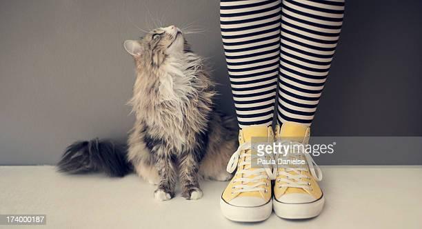 good talk - human leg stock photos and pictures
