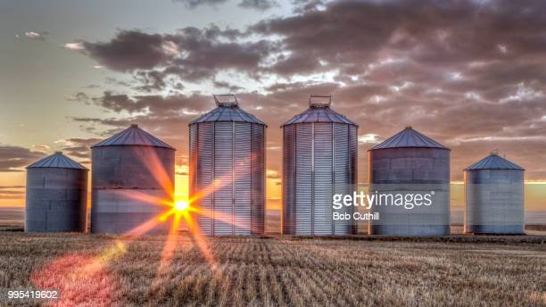 goodnight once again - silo stock photos and pictures