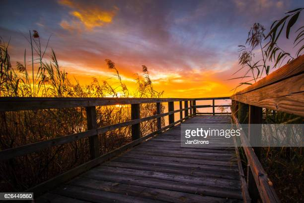 goodnight sun! - gulf coast states stock pictures, royalty-free photos & images