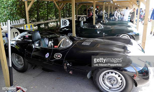 Goodwood Revival Meeting Goodwood Aerodrome UK D Type Jaguars in the paddock