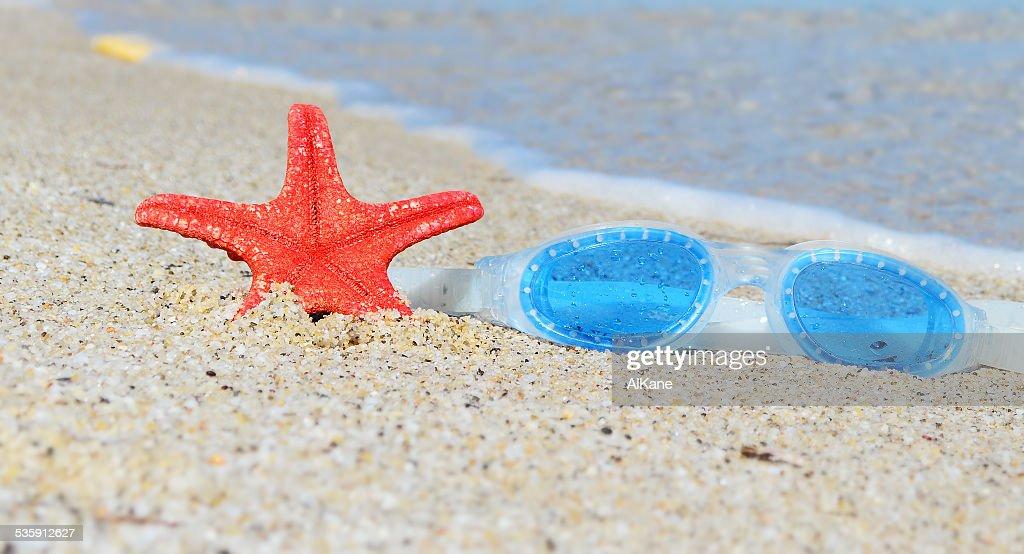 google y estrella de mar : Foto de stock