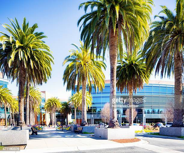 Google Mountain View California campus with palm trees