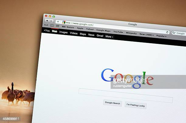 google search web site - google stock pictures, royalty-free photos & images