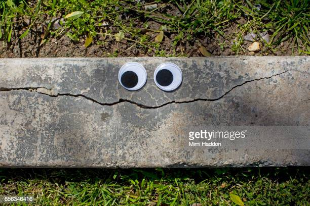 Googly Eyes on Cracked Sidewalk Making a Smiley Face