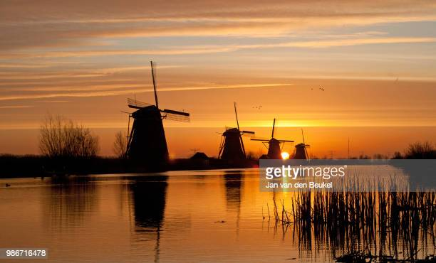 goooood morning holland! - dutch windmill stock photos and pictures