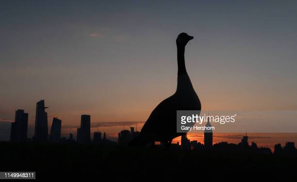 A goose stand in front of the Empire State Building and Hudson Yards in New York City as the sun rises on May 17 2019 as seen from Hoboken New Jersey