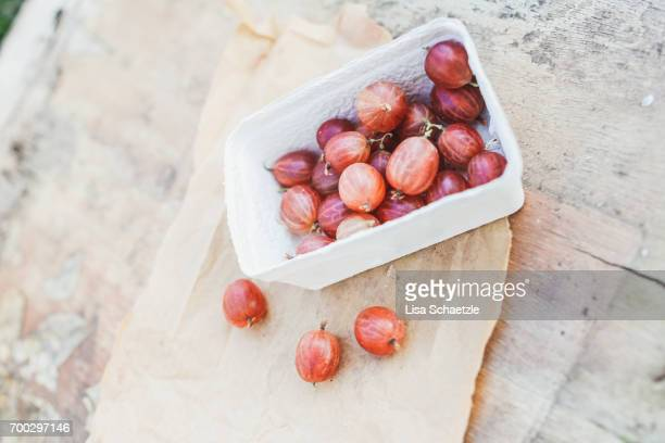 gooseberries in a bowl - gesunder lebensstil stock pictures, royalty-free photos & images