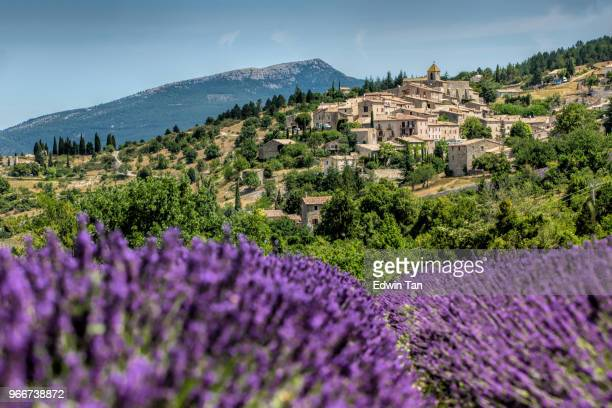 Gordes , Province France as background of the lavender field during summer