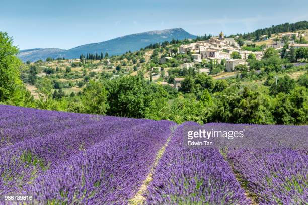 gordes , province france as background of the lavender field during summer - plateau de valensole stock photos and pictures