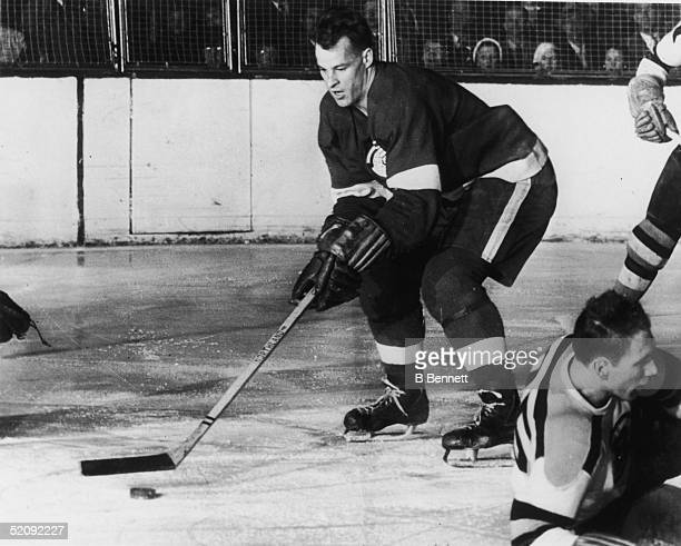 Gordie Howe of the Detroit Red Wings lines up the puck during a game against the Boston Bruins circa 1951 at Olympia Stadium in Detroit Michigan