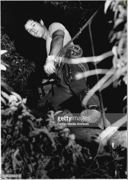 Gordon Anker from summer hill in the tree lopping businessFor the past year Gordon Anker has been up a tree five days a week with the jobs constantly...