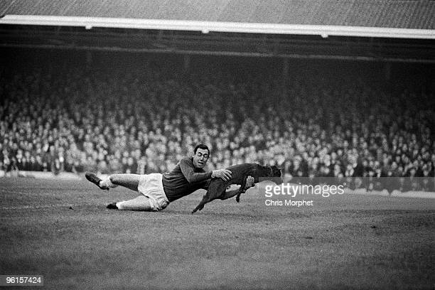 Gordon Banks Leicester City goalkeeper saving a dog during a match against Manchester United at Filbert Street Leicester 13th November 1965