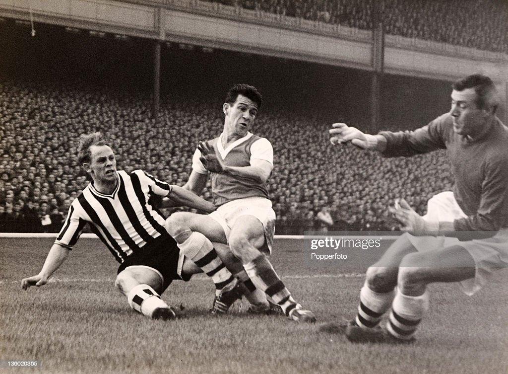 Arsenal v Newcastle United : News Photo