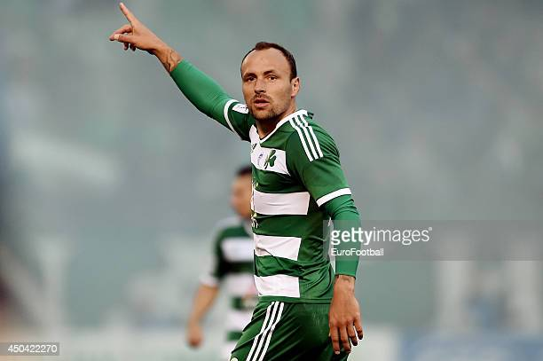 Gordon Schildenfeld of Panathinaikos in action during the Greek Cup semifinal match between Panathinaikos FC and OFI Crete FC at the Apostolos...