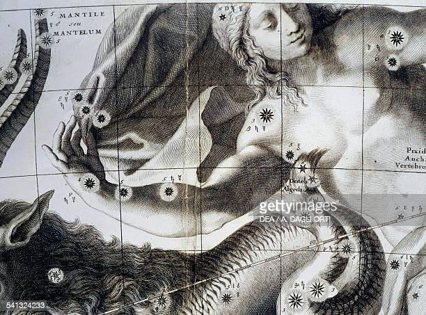 Gore II 8 printed paper gores and 2 gores with polar ice caps Louis Charles Desnos fused Celestial globe by Vincenzo Coronelli 1693 16th century