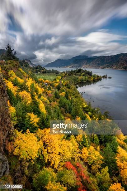 gorge view - tom grubbe stock pictures, royalty-free photos & images