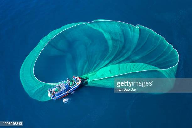 gorgeous anchovy-catching scenes in hon yen islet, aerial view from phu yen province, vietnam. - fishing industry stock pictures, royalty-free photos & images