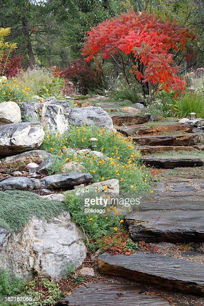 Gorgeous Fall Garden Stairs In The Rain