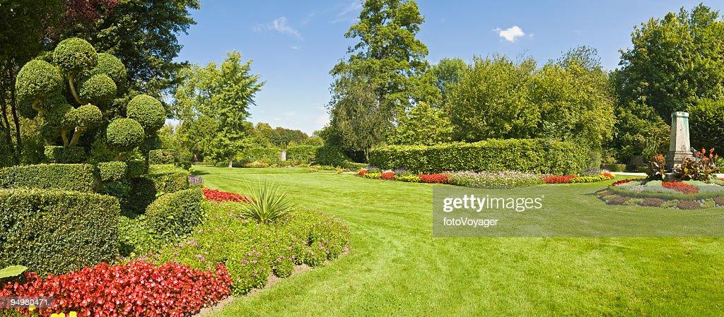 Wunderschöne garden green Gras : Stock-Foto