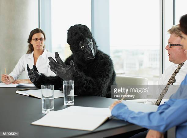 gorilla and businesspeople having meeting in conference room - primate stock pictures, royalty-free photos & images