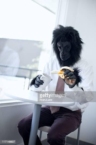 Gorille Homme d'affaires dans la salle de pause