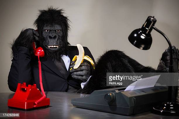 Gorilla Businessman