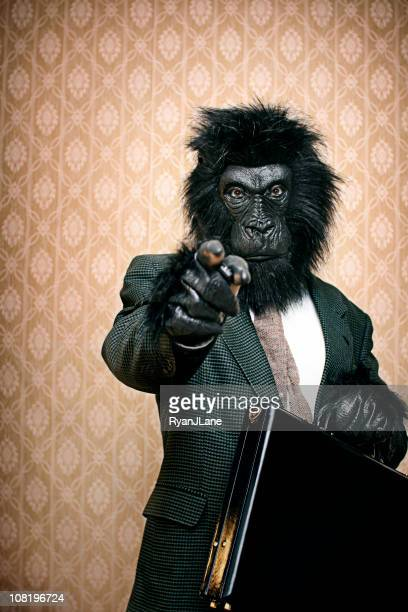 gorilla in a business suit with briefcase - monkey suit stock pictures, royalty-free photos & images