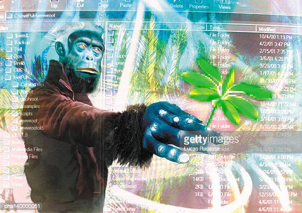 Gorilla in cyberspace, holding leaf, digital composite.