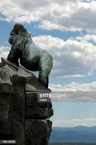 gorila en rocks - gorila lomo plateado fotografías e imágenes de stock
