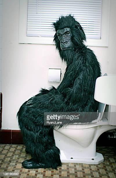 ゴリラを使用して、トイレを備えたバスルーム
