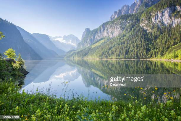 gosausee with dachstein view - austria stock pictures, royalty-free photos & images