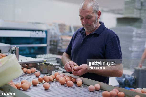 got to make sure these eggs are great quality - food distribution stock pictures, royalty-free photos & images