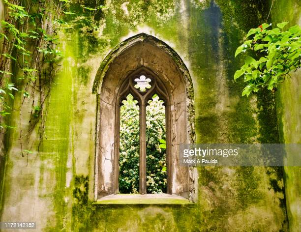 gothic church window with moss covered walls - stone material stock pictures, royalty-free photos & images