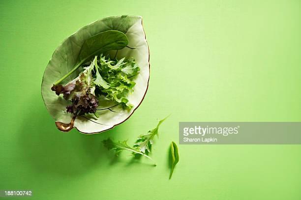 Gourmet green salad leaves