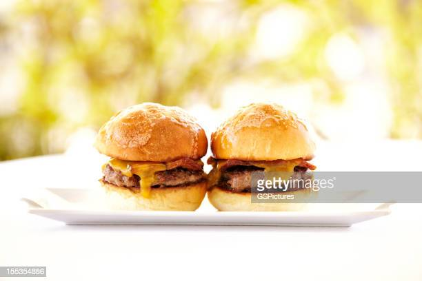 Gourmet hamburgers against nature background