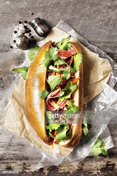 gourmet hotdog - catahoula leopard dog stock pictures, royalty-free photos & images