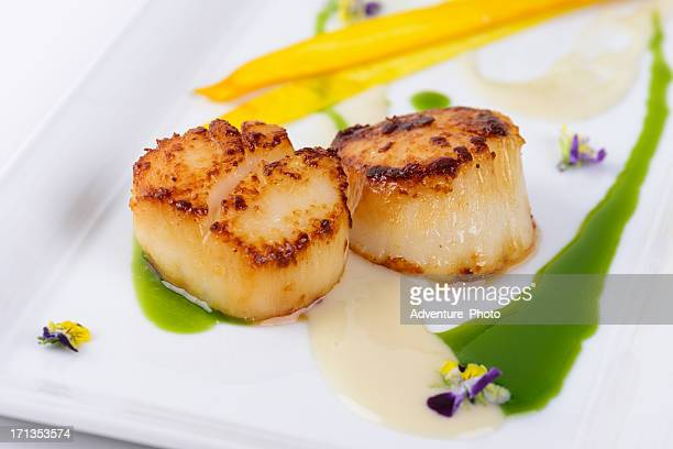 gourmet scallop entree at fine dining restaurant - scallop stock photos and pictures